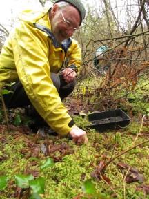 Bog Restoration &copy Brian Titaro