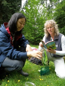 stanley park ecology report