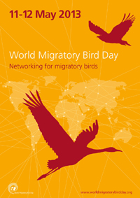 wmbd2013_poster_english