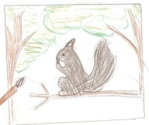 Squirrel by Miko, grade 4, Vancouver