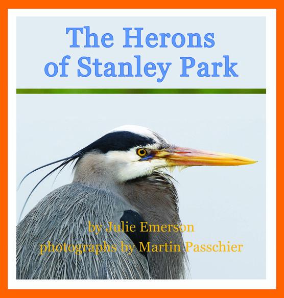 Herons of Stanley Park 1