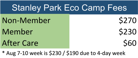 Summer Day Camp Fees